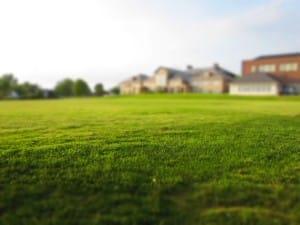 lawn-768316_960_720